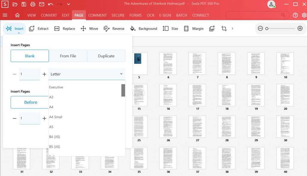 Page Feature - Insert Pages - Type of Page example - Soda PDF 12