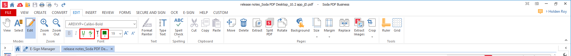 How to Use the Format Painter for PDF | Soda PDF Blog