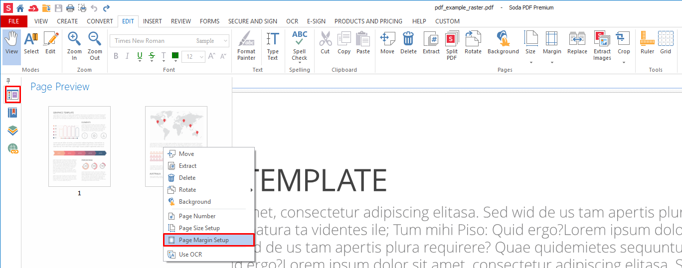 page preview set custom margins for PDF Page
