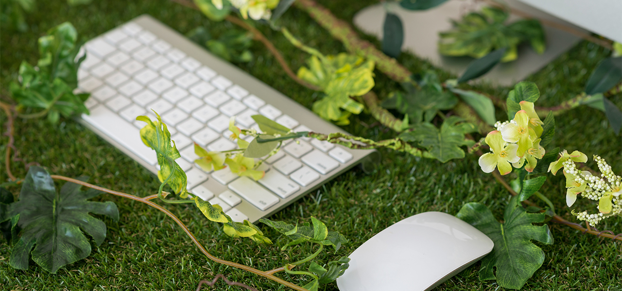 7 Eco-Friendly Office Trends That Pay Off IMMEDIATELY