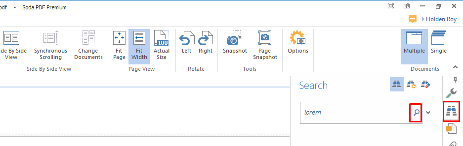 standard option how to search pdfs