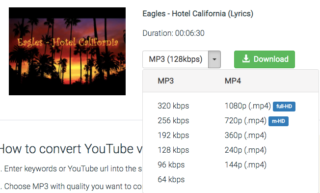 YouTube to MP3 Converter example