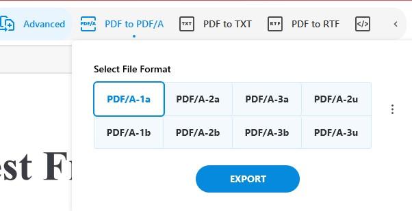 Archive PDF - Convert Feature - Convert PDF to PDFA - Soda PDF 12